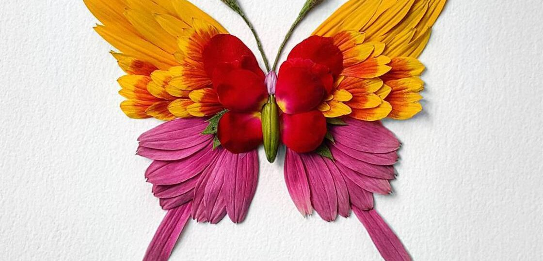 natura-insects-raku-inoue-4